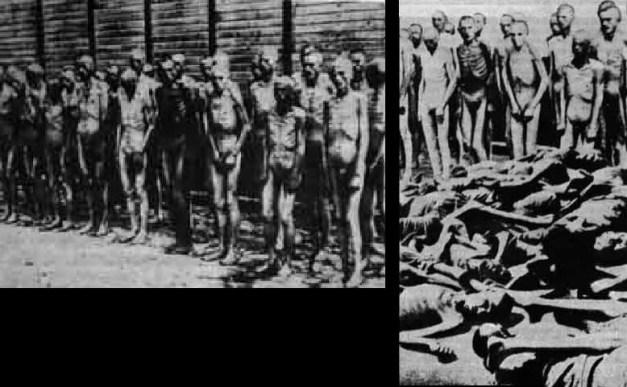 Resultado de imagen para imagenes fotos trucadas holocausto campos de concentración tifus