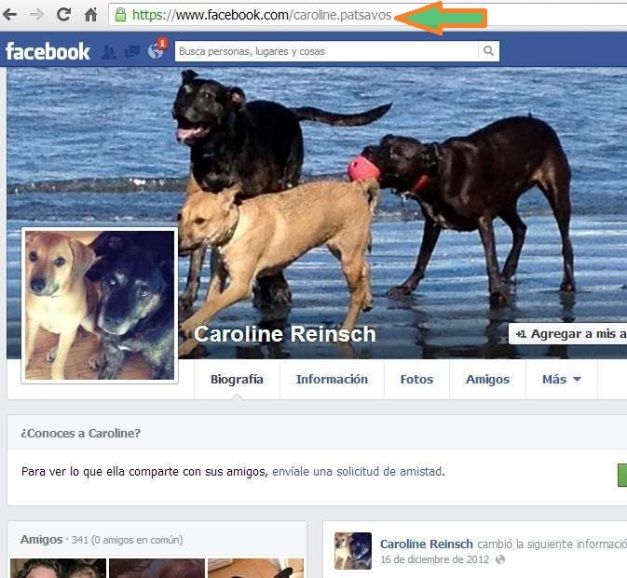 CAROLINE PATSAVOS ES CAROLINE REINSCH (FACEBOOK) (FILEminimizer)