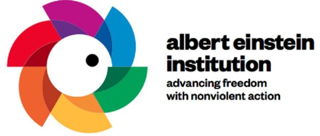 LOGO ALBERT EINSTEIN INSTITUTE (01) (FILEminimizer)