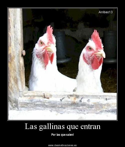 LAS GALLINAS QUE ENTRAN POR LAS QUE SALEN (00)