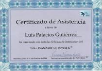 LUIS MANUEL PALACIOS GUTIERREZ (10)